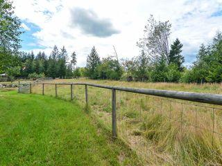 Photo 59: 2390 Humphrey Rd in MERVILLE: CV Merville Black Creek House for sale (Comox Valley)  : MLS®# 738200