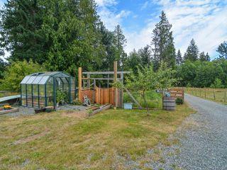 Photo 58: 2390 Humphrey Rd in MERVILLE: CV Merville Black Creek House for sale (Comox Valley)  : MLS®# 738200