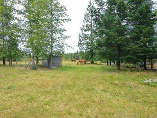 Photo 43: 2390 Humphrey Rd in MERVILLE: CV Merville Black Creek House for sale (Comox Valley)  : MLS®# 738200