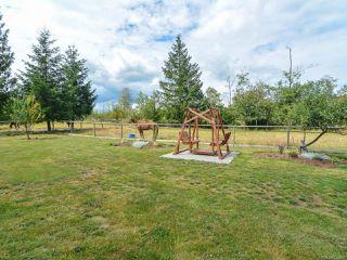 Photo 49: 2390 Humphrey Rd in MERVILLE: CV Merville Black Creek House for sale (Comox Valley)  : MLS®# 738200