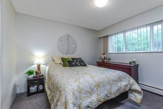 Photo 8: 21466 MAYO Place in Maple Ridge: West Central Townhouse for sale : MLS®# R2106633
