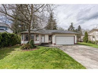 Photo 1: 12471 231ST Street in Maple Ridge: East Central House for sale : MLS®# R2156595