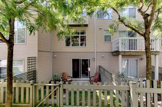 Photo 18: 174 20033 70 Avenue in Langley: Willoughby Heights Townhouse for sale : MLS®# R2185208
