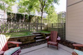 Photo 17: 174 20033 70 Avenue in Langley: Willoughby Heights Townhouse for sale : MLS®# R2185208