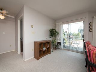 "Photo 6: 202 5363 206 Street in Langley: Langley City Condo for sale in ""Park Estates II"" : MLS®# R2188125"