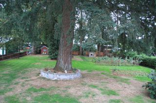 Photo 9: 3170 Old Clayburn Road in Abbotsford: Abbotsford East House for sale : MLS®# R2211012