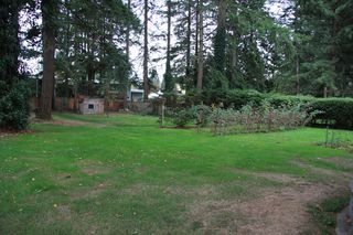 Photo 10: 3170 Old Clayburn Road in Abbotsford: Abbotsford East House for sale : MLS®# R2211012