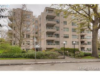Photo 6: 206 1500 Elford Street in VICTORIA: Vi Fernwood Residential for sale (Victoria)  : MLS®# 377342
