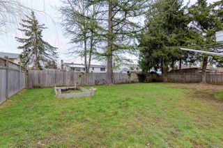 Photo 20: 22953 ROGERS Avenue in Maple Ridge: East Central House for sale : MLS®# R2246573