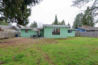 Photo 18: 22953 ROGERS Avenue in Maple Ridge: East Central House for sale : MLS®# R2246573