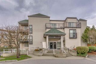 Photo 1: 114 2401 HAWTHORNE Avenue in Port Coquitlam: Central Pt Coquitlam Condo for sale : MLS®# R2252834