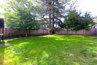 Photo 16: 3317 HANDLEY Crescent in Port Coquitlam: Lincoln Park PQ House for sale : MLS®# R2322006