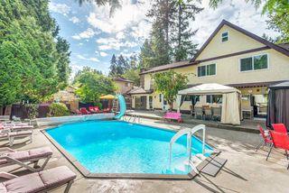 Photo 17: 21293 DOUGLAS Avenue in Maple Ridge: West Central House for sale : MLS®# R2329324