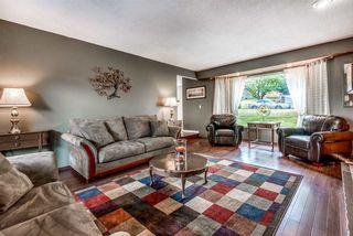 Photo 3: 21293 DOUGLAS Avenue in Maple Ridge: West Central House for sale : MLS®# R2329324
