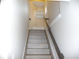Photo 13: 10951 81 Avenue in Edmonton: Zone 15 House for sale : MLS®# E4143741