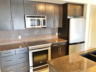 Photo 5: 308 11203 103A Avenue in Edmonton: Zone 12 Condo for sale : MLS®# E4145067