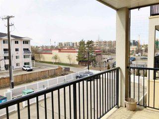 Photo 18: 308 11203 103A Avenue in Edmonton: Zone 12 Condo for sale : MLS®# E4145067