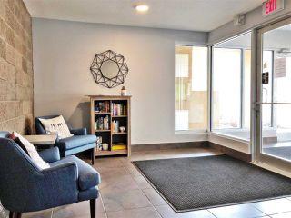 Photo 22: 308 11203 103A Avenue in Edmonton: Zone 12 Condo for sale : MLS®# E4145067