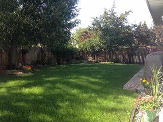Photo 28: 290 HEATH Road in Edmonton: Zone 14 House for sale : MLS®# E4147255