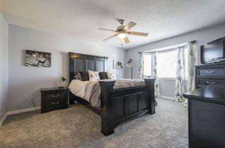 Photo 15: 290 HEATH Road in Edmonton: Zone 14 House for sale : MLS®# E4147255