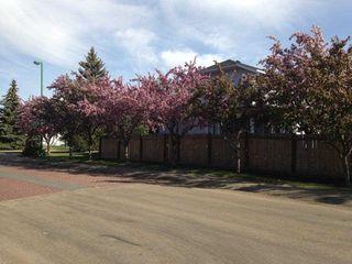 Photo 27: 290 HEATH Road in Edmonton: Zone 14 House for sale : MLS®# E4147255