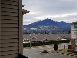Photo 17: 318 45769 STEVENSON Road in Sardis: Sardis East Vedder Rd Condo for sale : MLS®# R2348093