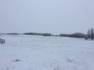Photo 5: 60314 Rge Rd 252: Rural Westlock County Rural Land/Vacant Lot for sale : MLS®# E4152097