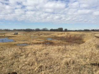 Photo 8: 60314 Rge Rd 252: Rural Westlock County Rural Land/Vacant Lot for sale : MLS®# E4152097