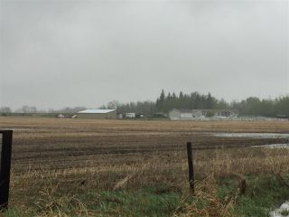 Photo 14: 60314 Rge Rd 252: Rural Westlock County Rural Land/Vacant Lot for sale : MLS®# E4152097