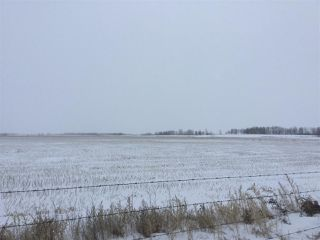 Photo 1: 60314 Rge Rd 252: Rural Westlock County Rural Land/Vacant Lot for sale : MLS®# E4152097