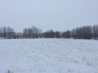 Photo 4: 60314 Rge Rd 252: Rural Westlock County Rural Land/Vacant Lot for sale : MLS®# E4152097