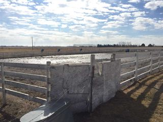 Photo 7: 60314 Rge Rd 252: Rural Westlock County Rural Land/Vacant Lot for sale : MLS®# E4152097
