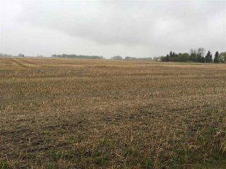 Photo 2: 60314 Rge Rd 252: Rural Westlock County Rural Land/Vacant Lot for sale : MLS®# E4152097