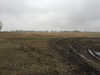 Photo 15: 60314 Rge Rd 252: Rural Westlock County Rural Land/Vacant Lot for sale : MLS®# E4152097