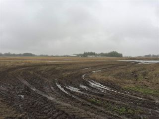 Photo 16: 60314 Rge Rd 252: Rural Westlock County Rural Land/Vacant Lot for sale : MLS®# E4152097
