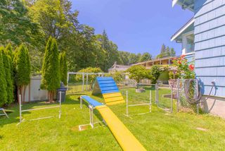 """Photo 20: 1125 SPRINGER Avenue in Burnaby: Brentwood Park House for sale in """"BRENTWOOD PARK"""" (Burnaby North)  : MLS®# R2383887"""