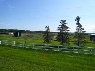 Photo 17: 48319 Hwy 795: Rural Leduc County House for sale : MLS®# E4181236