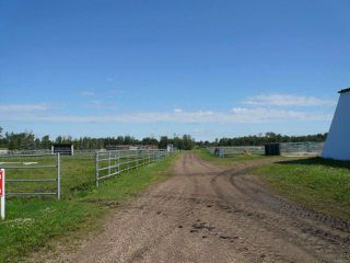 Photo 14: 48319 Hwy 795: Rural Leduc County House for sale : MLS®# E4181236