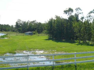 Photo 23: 48319 Hwy 795: Rural Leduc County House for sale : MLS®# E4181236