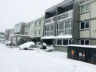 "Photo 1: 126 3451 SPRINGFIELD Drive in Richmond: Steveston North Condo for sale in ""IMPERIAL BY THE SEA"" : MLS®# V1039289"