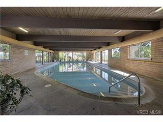 Photo 20: 503 2920 Cook St in VICTORIA: Vi Mayfair Condo for sale (Victoria)  : MLS®# 702367