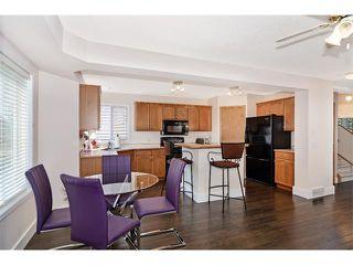 Photo 28: 201 MT ABERDEEN Circle SE in Calgary: McKenzie Lake House for sale : MLS®# C4020701