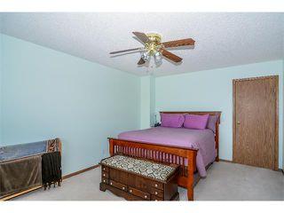 Photo 18: 201 MT ABERDEEN Circle SE in Calgary: McKenzie Lake House for sale : MLS®# C4020701
