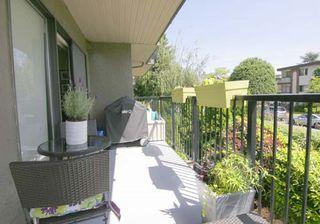 """Photo 11: 210 288 E 14TH Avenue in Vancouver: Mount Pleasant VE Condo for sale in """"VILLA SOPHIA"""" (Vancouver East)  : MLS®# R2075000"""