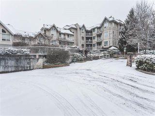 """Photo 11: 302 13475 96 Avenue in Surrey: Whalley Condo for sale in """"IVY CREEK"""" (North Surrey)  : MLS®# R2136178"""