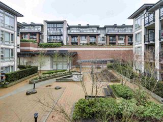 "Photo 14: 225 738 E 29TH Avenue in Vancouver: Fraser VE Condo for sale in ""CENTURY"" (Vancouver East)  : MLS®# R2146306"