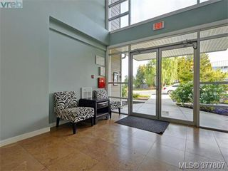 Photo 14: 206 1405 Esquimalt Rd in VICTORIA: Es Saxe Point Condo for sale (Esquimalt)  : MLS®# 758598