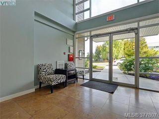 Photo 14: 206 1405 Esquimalt Rd in VICTORIA: Es Saxe Point Condo Apartment for sale (Esquimalt)  : MLS®# 758598