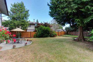 Photo 6: 274 W MURPHY Drive in Delta: Pebble Hill House for sale (Tsawwassen)  : MLS®# R2191282
