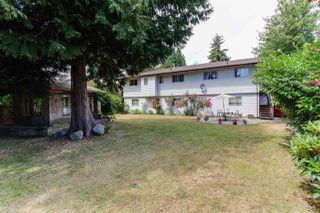 Photo 5: 274 W MURPHY Drive in Delta: Pebble Hill House for sale (Tsawwassen)  : MLS®# R2191282